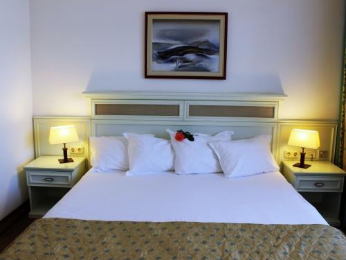 Hotel Royal Palace Helena Park Bulgaria (3 / 31)